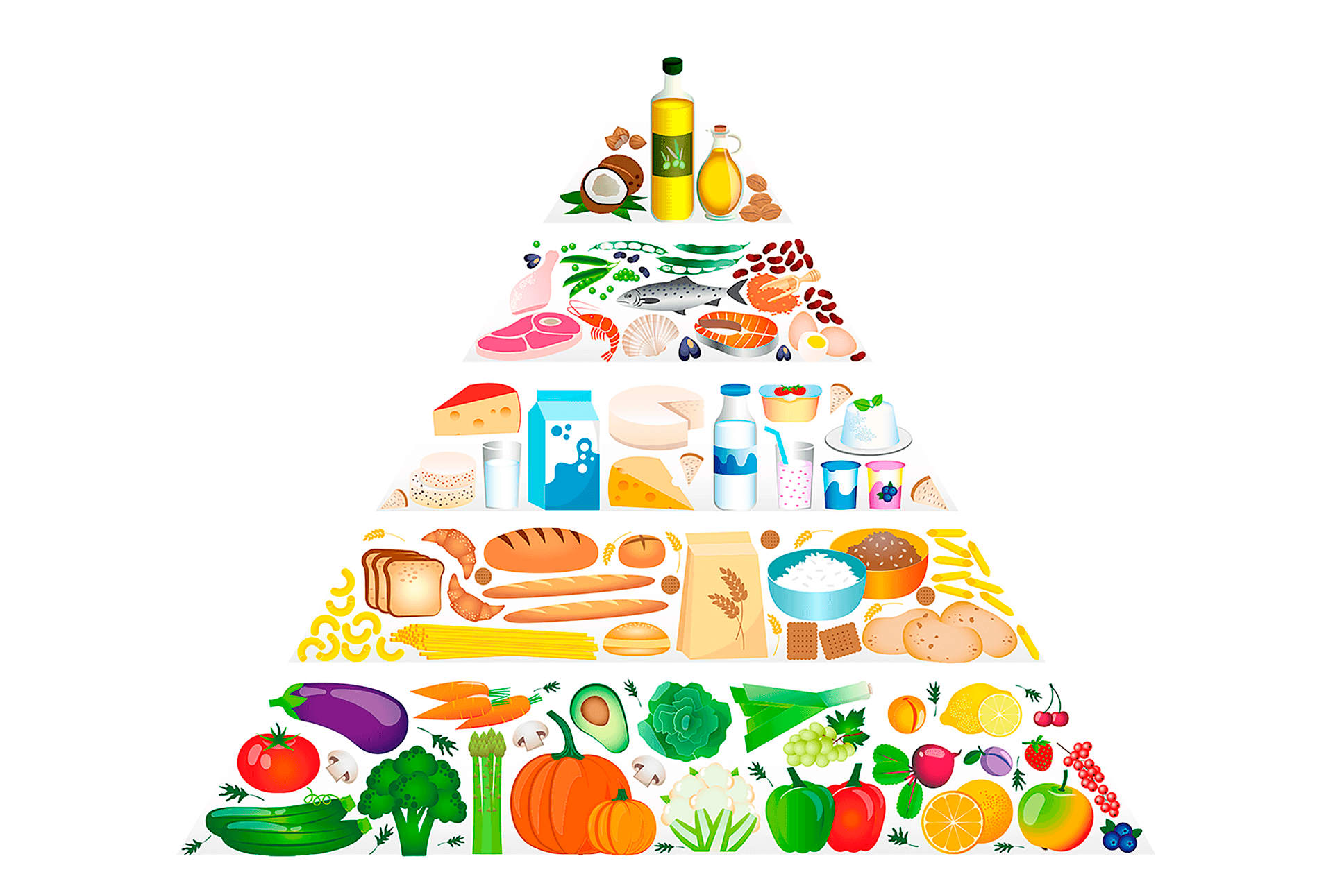main components of food pyramid for children - food pyramid for kids