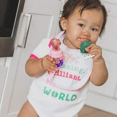 ashtonbee baby fruit feeder pacifier - best baby food feeders